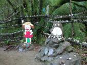 [埼玉] 10月29日(10/29)  日本を代表するアニメキャラを見に行こう!トトロの森で森林浴&湖を眺めるセラピーウォーキングコン