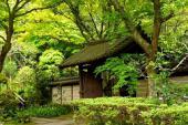 [鎌倉] 1月8日(1/8)  初心者本格トレッキングコン!鎌倉アルプスを散策して気持ちをリフレッシュしちゃいましょう♪