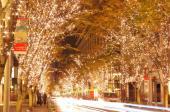 [東京] 1月8日(1/8)  冬の風物詩として街を彩る恒例のイベント「丸の内イルミネーション」を観賞しながら出逢おう! !