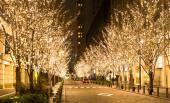 [東京] 1月28日(1/28)  ★20代限定企画★丸の内イルミネーション&日比谷公園ウォーキングコン!