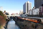 [東京] 3月4日(3/4)  大人の休日は!上野発!東京下町パワースポットウォーキングコン!