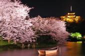 [横浜] 4月2日(4/2)  横浜日本庭園お花見ライトアップNightウォーキングコン!