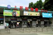 [東京] 7月15日(7/15)  動物たちに癒されよう!上野のパンダを見に行こう♪上野動物園巡る30代40代ウォーキングコン!