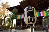 [高尾] 10月14日(10/14)  最高のロケーションを楽しもう!!高尾山ウォーキングコン!