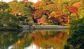 [駒込] 11月19日(11/19)  紅葉で有名な庭園で風情を楽しむ!六義園日本庭園ウォーキングコン!!
