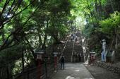 [高尾] 2月17日(2/17)  気軽に行ける高尾山に行こう!!高尾山ウォーキングコン!