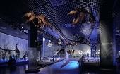 [上野] 20~45才 ミュージアム♪ ~1人参加・初参加~【上野】男性3500円・女性500円のイベントです♪