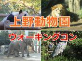 [上野動物園] 11/23(祝)上野動物園*散策コン|20~30代!動物を見て回りながら婚活パーティー♪♂3000♀1000