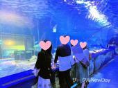 [東京] ★9/16 品川水族館の恋活・友達作り ★ 自然な出会いはここから★