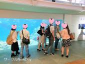[大阪・関西] ★1/27 大阪・海遊館で楽しく恋活・友達作り★ 関西のイベント毎週開催★