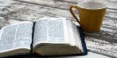 """[高田馬場] 英会話交流カフェ """"English Bible Reading""""~世界で最も使われる『言語』で、世界で最も読まれる『書物』を読んで..."""