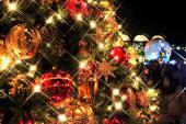 [六本木] 【300名overで女性先行】女性無料ご招待中! プレミアム クリスマス ナイト♪ 特別ゲストにあの芸能人も参加決定!