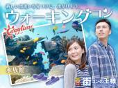 [品川] アクアパーク品川 ウォーキングコン【男性80年代生まれvs大人女子】水族館デートで出会える♪