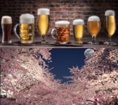 男女多数定員間近❤️タイムサービス特別割引❤️ビヤホールでのビア会!ビールのプロが注ぐ生ビール黒生ビールはもちろん、サワ...