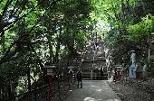 [東京] 5月29日(5/29)  行楽シーズン到来!!絶景トレッキングで最高のムードに♪初心者OK山登りコン!