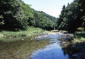 [埼玉] 8月6日(8/6)  男性満席!嵐山渓谷を訪れ野外スペイン料理づくりと川遊びを楽しんじゃいます!!