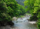 [東京] 7月16日(7/16)  渓谷のせせらぎを聞きながらマイナスイオンを浴びよう!御岳渓谷ハイキングコン