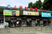[上野] 4月1日 お花見シーズンに!上野動物園に人気のパンダを見に行こう!動物園お花見ウォーキングコン!