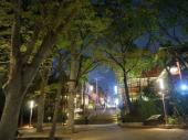 [吉祥寺] 7月7日吉祥寺で夜のデートを楽しもう!吉祥寺ナイトデートコン!