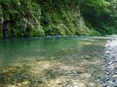 [二子玉川] 7月14日 ここが東京!?大自然の中でマイナスイオンを浴びよう!等々力渓谷パワースポットウォーキングコン!
