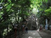 [高尾山] 8月4日八王子の夜景が楽しめる!夜の高尾山へ!登山ナイトハイキング!