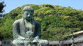 [鎌倉] 8月12日鎌倉で屈指の登山ハイキング、天園トレッキングコン!