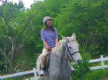 [馬場] 【平日アウトドア! 本格 乗馬体験】  社会人サークルFEAD