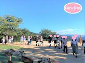 ★11/28 奈良公園&若草山の散策コン ★ 関西のイベント開催中!★
