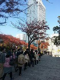 [横浜]  1月11日関東一の港町!!~横浜ウォーキング婚活~