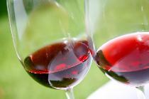 [銀座] 2月6日(金)銀座で国際交流ワイン&チーズパーティー