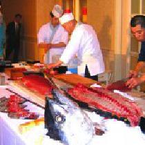 [表参道] 【女性 過半数超え】寿司祭り!マグロ解体ショーの宴