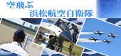[静岡・浜松] 【自衛官と婚活パーティー】30vs30☆浜松航空自衛官との出会い☆基地&航空見学&婚活パーティー