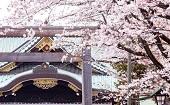 [飯田橋] 20~45才 パワースポット&桜♪ ~1人参加~【飯田橋】