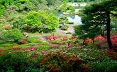 [駒込] 20~45才 ガーデン♪ ~1人参加~【駒込】
