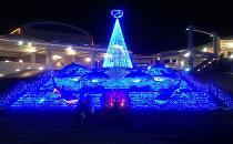 [横浜八景島] 八景島シーパラダイスでクリスマス満喫ツアー