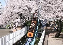 [練馬区] 春のとしまえんを満喫しよう!