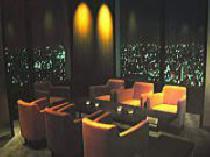 [新宿] 11月15日新宿新宿摩天楼の絶景の エグゼクティブ夜景パーティー !!