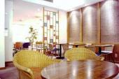 [銀座] 8/31銀座の洋風ハウス風隠れ家カフェでアフターファイブを楽しもう。