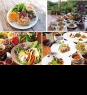 [四ツ谷] 巷で大流行の【オーガニック料理】でディッシュパーティー開催♪♪ 体に優しい、美味しい、ヘルシーなお料理を☆