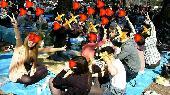 [栃木、宇都宮] 4/9(日)☆★栃木・宇都宮・八幡山公園・春の桜お花見オフ会★☆ 友達作り飲み会アウトドアイベントパーティ...