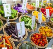 [日比谷/有楽町] ☘酵素たっぷり料理de体にやさしいランチ会☘大人の友達づくり応援《幅広い世代の方歓迎!!》プチマジック付き♪