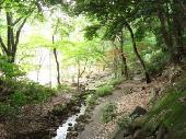 [港区芝] ❤️elegance ウオーキング会❤️東京タワーを眺めながら✨芝公園の緑と自然を感じ✨リフレッシュしましょう✨❤️elegance p...