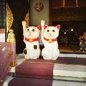 [浅草] お散歩コン!浅草のパワースポット神社でお参り後、食べ歩きをし最後はカフェでまったり!