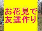 [新宿] 本日ドタ参OK お花見パーティー初めて参加一人参加大歓迎