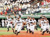 [新宿] 『茶pop』第98回全国高校野球選手権大会の予想と展望を熱く語るカフェ会
