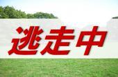 [原宿] 【どろけい@代々木公園】~泥棒と警察の頂上決戦!自由を手に入れろ!~