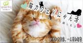 [新宿] 現在、男女比抜群でお申し込み中! 猫と触れあいながら男女でまったり楽しむ猫カフェコン♡和テイストの落ち着いた空...