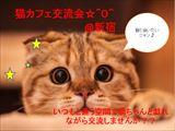 [新宿] 【和み人募集!】新宿の猫カフェで楽しみながら交流しませんか??^^