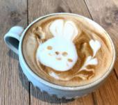 [新宿] 【新宿駅5分】ちょい飲み♪オシャレなカフェのゆるカフェ会★フリートーク♪毎回いい人集まってます!初参加・1人参加で...